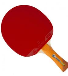 乒乓球拍2
